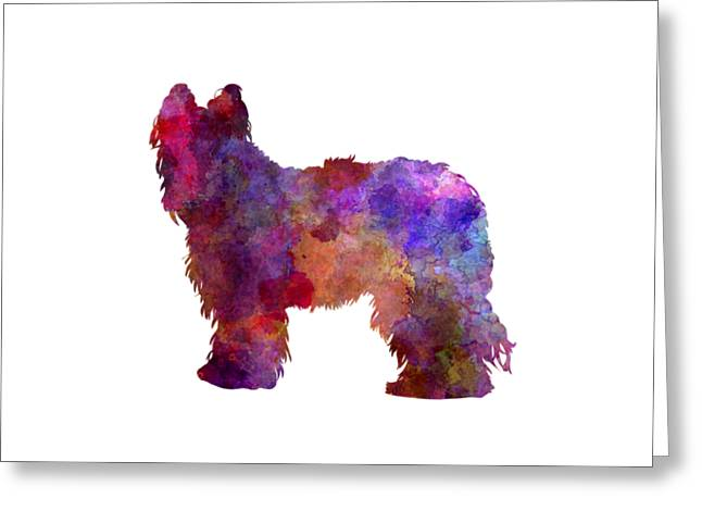 Briard In Watercolor Greeting Card by Pablo Romero