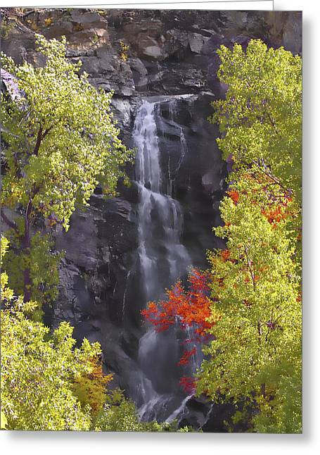 Bridal Veil Falls Black Hills Greeting Card by Rich Stedman