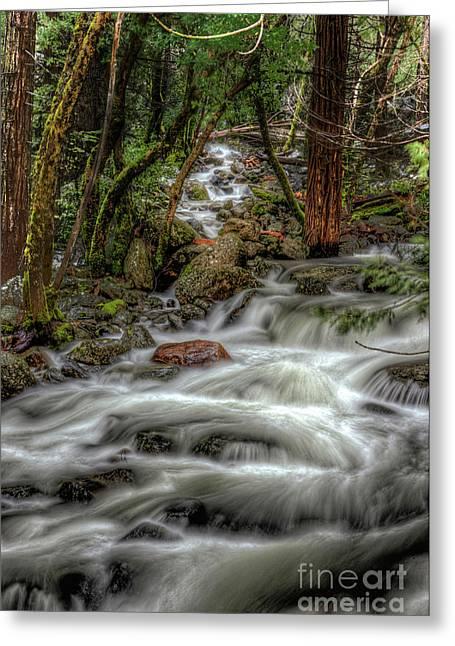 Bridalveil Creek 967 Greeting Card by Terry Garvin