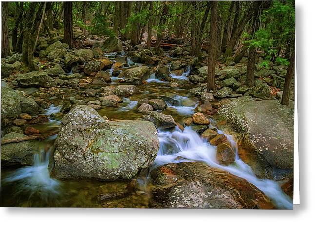 Bridalveil Creek Greeting Card by Chuck De La Rosa