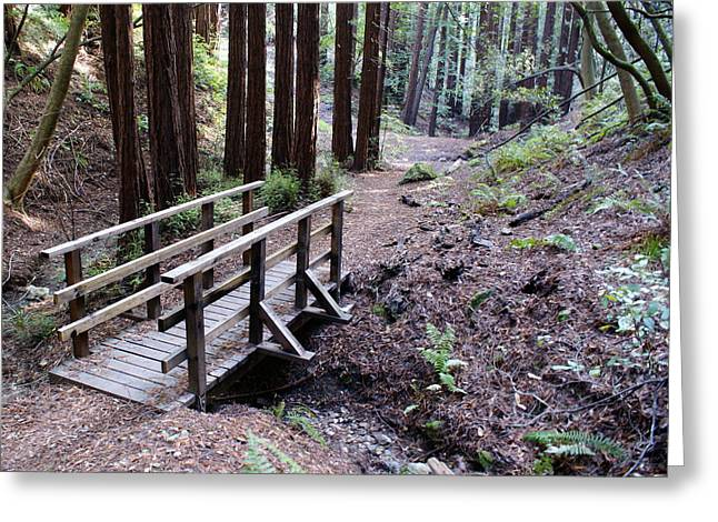 Bridge In The Redwoods Greeting Card