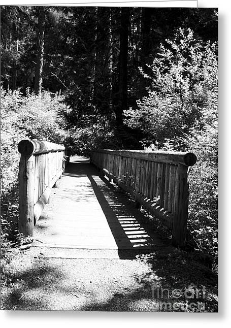 Greeting Card featuring the photograph Bridge In Woods by Yulia Kazansky
