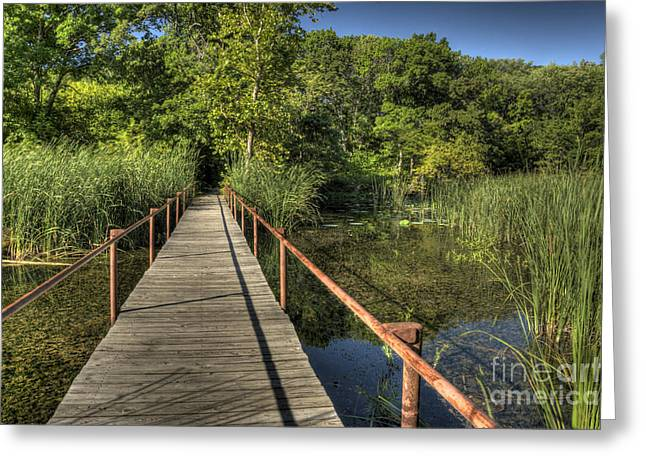 Greeting Card featuring the photograph Bridge Into The Forest At Lake Murray by Tamyra Ayles