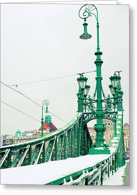 Bridge Of Liberty In Budapest Greeting Card by Anastasy Yarmolovich