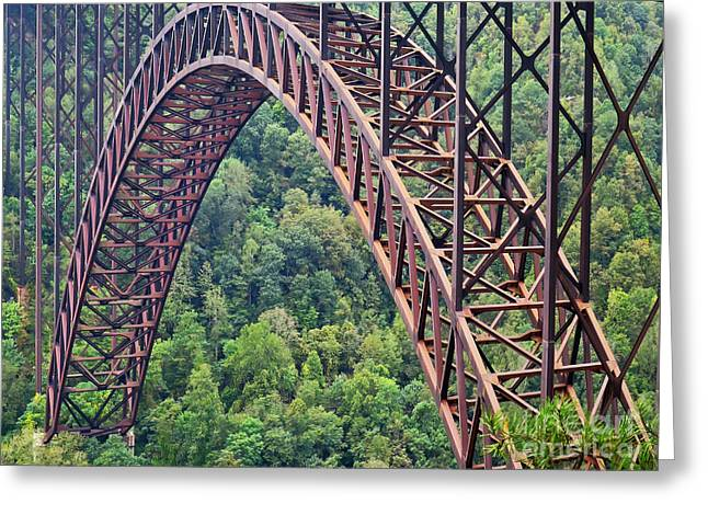 Greeting Card featuring the photograph Bridge Of Trees by Rick Locke