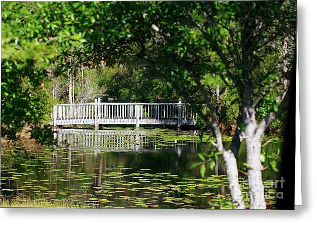 Greeting Card featuring the photograph Bridge On Lilly Pond by Lori Mellen-Pagliaro