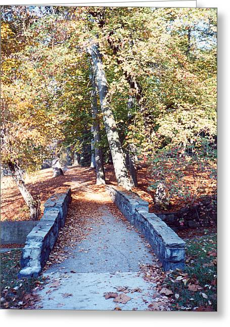 Bridge On The Path Greeting Card
