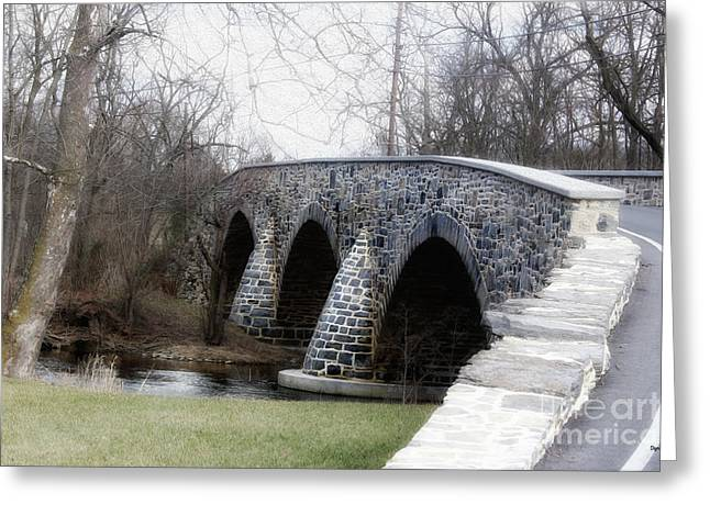 Bridging The Country  Greeting Card by Steven Digman