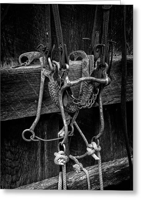 Bridle And Barn In Black And White Greeting Card