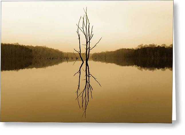 Greeting Card featuring the photograph Briery Creek  by Alan Raasch