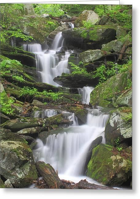Briggs Brook Waterfall New England National Scenic Trail Greeting Card by John Burk