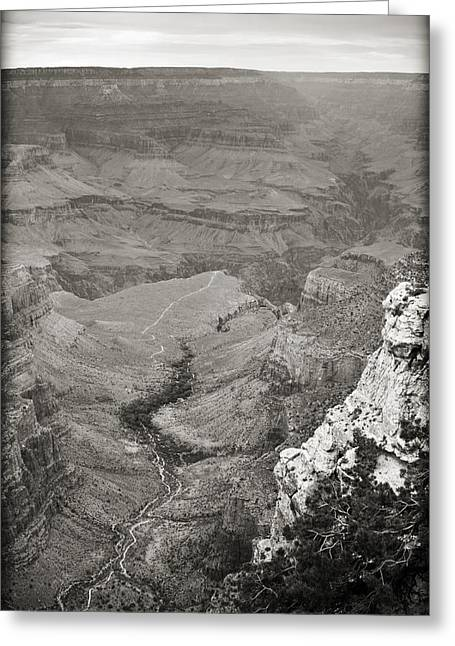 Bright Angel Trail Black And White Greeting Card by Ricky Barnard