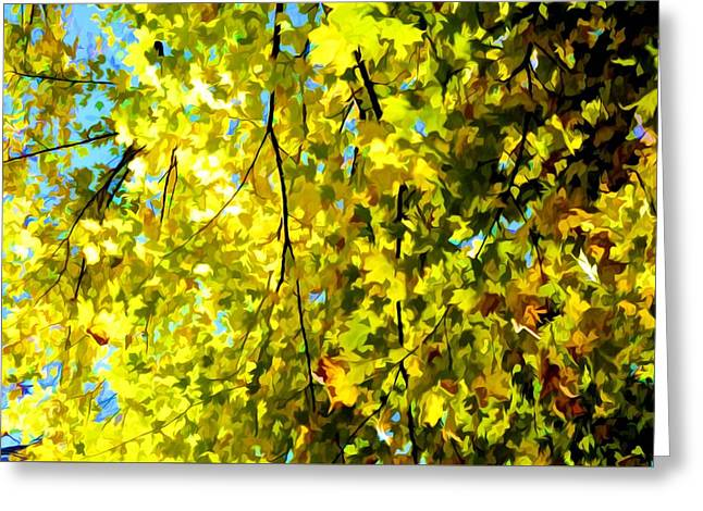 Bright Autumn Leaves  Greeting Card