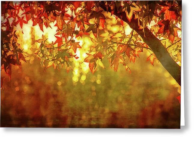 Bright Autumn Magic Greeting Card