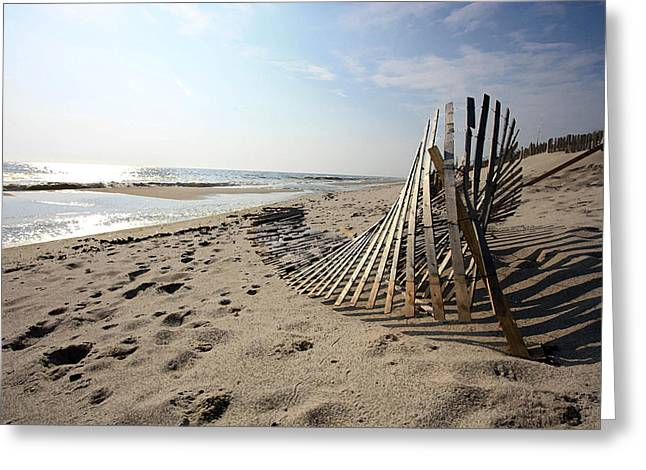 Bright Beach Morning Greeting Card by Mary Haber