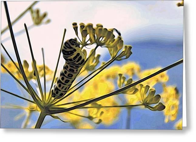 Bright Caterpillar Greeting Card by Alexandre Ivanov