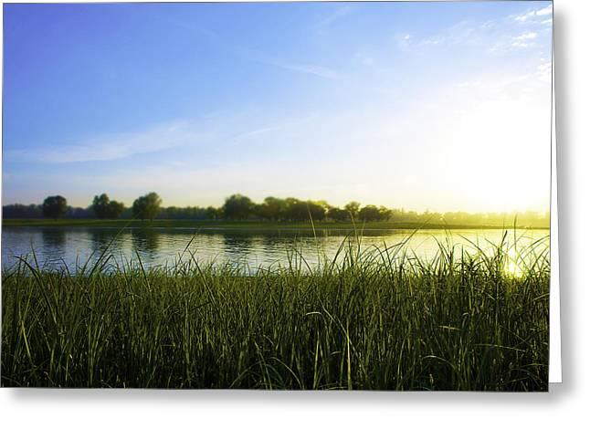 Bright Eve Sun Greeting Card by Svetlana Sewell