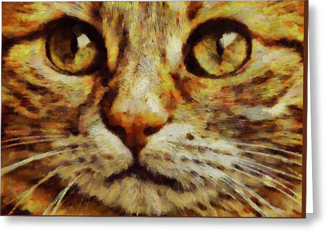 Bright Eyes By Pierre Blanchard Greeting Card