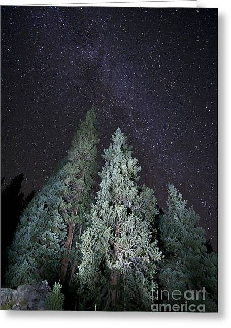 Bright Night Greeting Card by Jeff Kolker