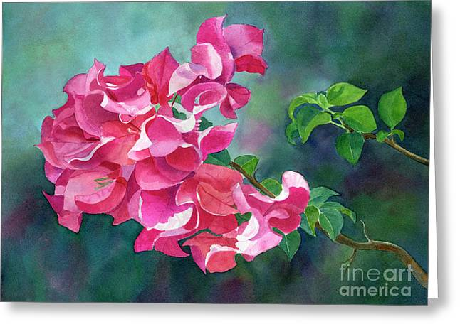 Bright Pink Bougainvillea With Dark Background Greeting Card