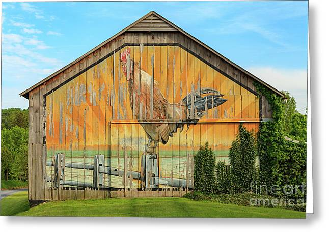 Bright Rooster Barn Greeting Card