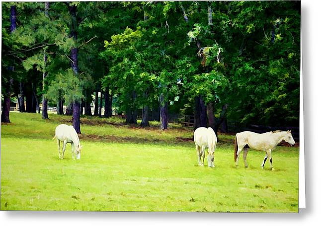 Bright Summer Day Greeting Card by Jan Amiss Photography
