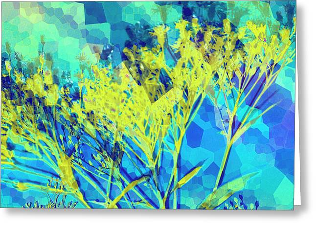 Brighter Day Greeting Card by Shawna Rowe