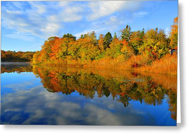 Brilliance Of Autumn Greeting Card