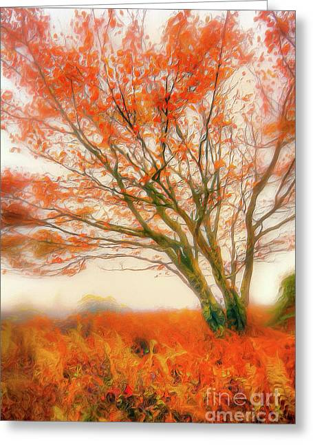 Greeting Card featuring the painting Brilliant Orange Autumn Fall Colors Tree Ap by Dan Carmichael