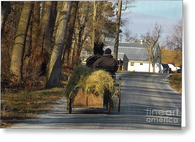Brining Home The Hay Greeting Card by Skip Willits