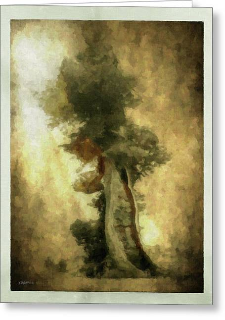 Bristlecone Pine Greeting Card by Kathie Miller