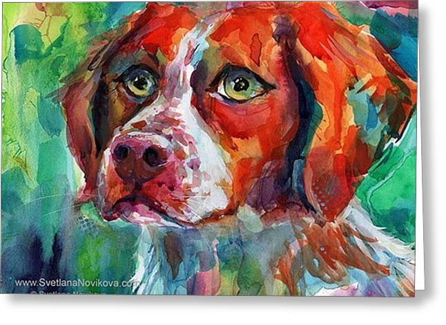 Brittany Spaniel Watercolor Portrait By Greeting Card