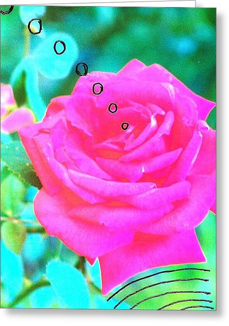 Broadcasting Rose Greeting Card by Rod Ismay