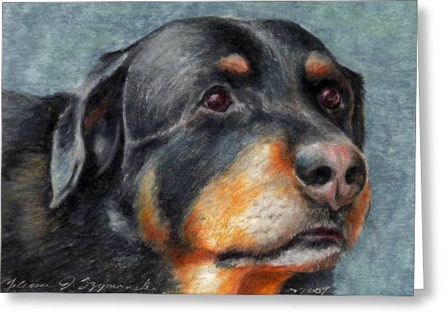 Brody Greeting Card by Melissa J Szymanski