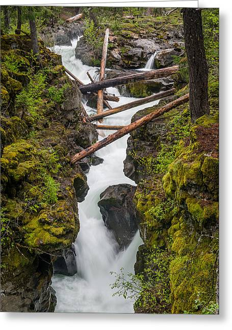 Broiling Rogue Gorge Greeting Card by Greg Nyquist