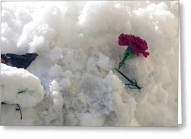 Greeting Card featuring the photograph Broken Promise by Wanda Brandon