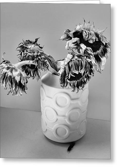 Broken Sunflowers Greeting Card by William Dey