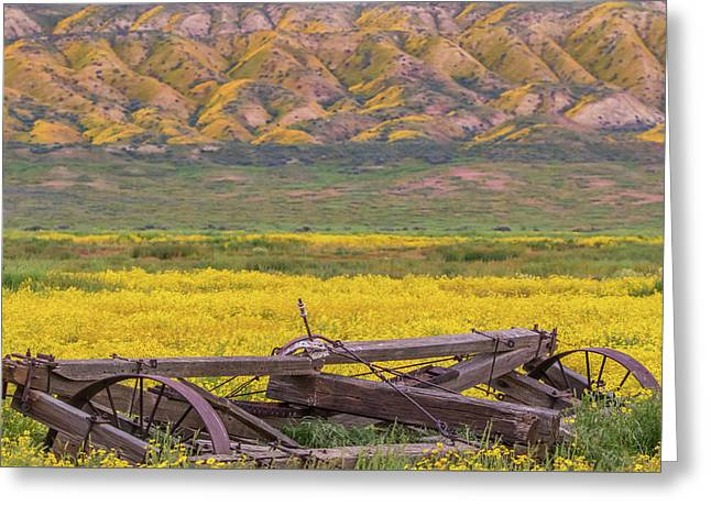 Greeting Card featuring the photograph Broken Wagon In A Field Of Flowers by Marc Crumpler