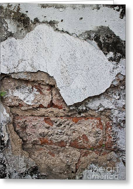 Broken White Stucco Wall With Weathered Brick Texture Greeting Card by Jason Rosette