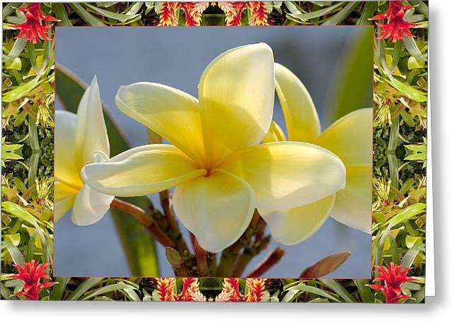 Bromeliad Plumeria Greeting Card