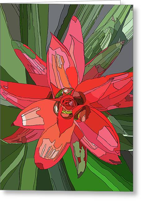 Bromiliad Greeting Card