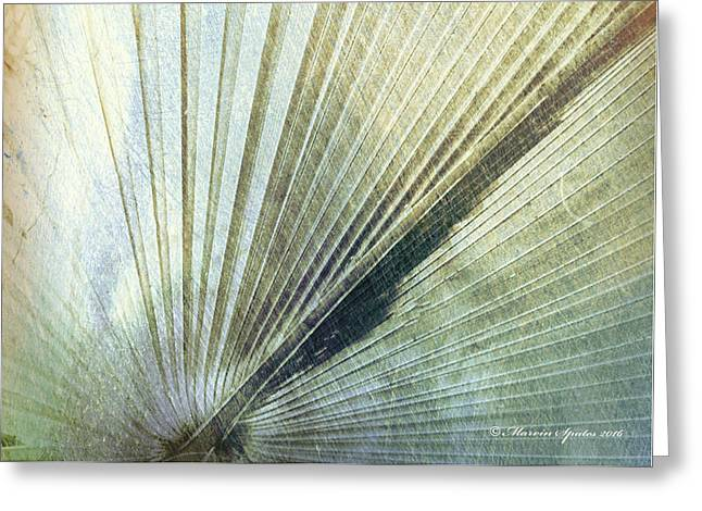 Bronze Blue Palm Frond Rh Greeting Card