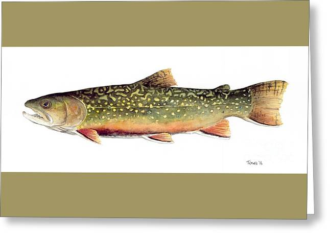Brook Trout Portrait Greeting Card by Trevor Lewis