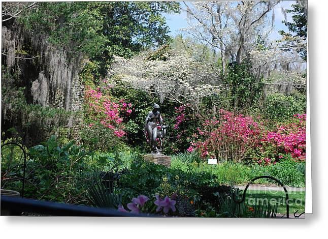 Brookgreen Gardens 2 Greeting Card
