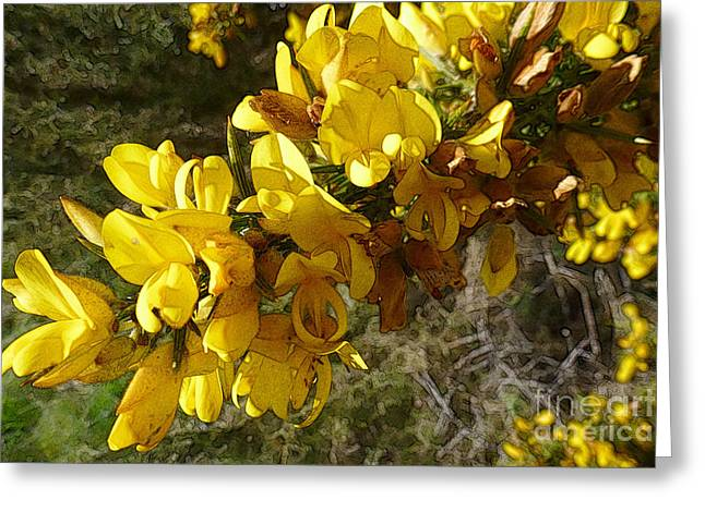 Broom In Bloom Greeting Card