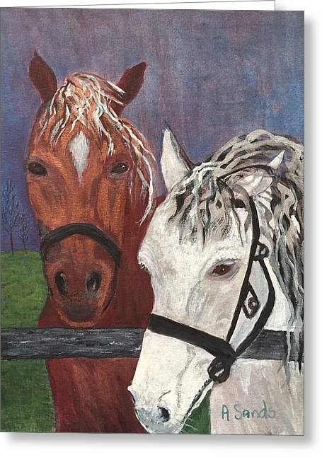 Brown And White Horses Greeting Card