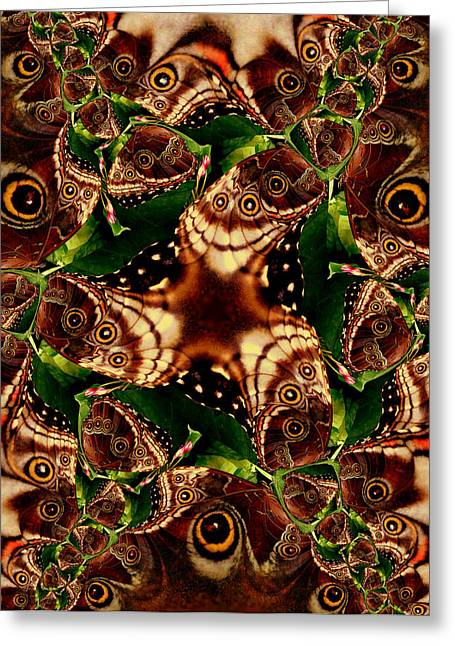 Brown Butterfly Collage Greeting Card by Irma BACKELANT GALLERIES