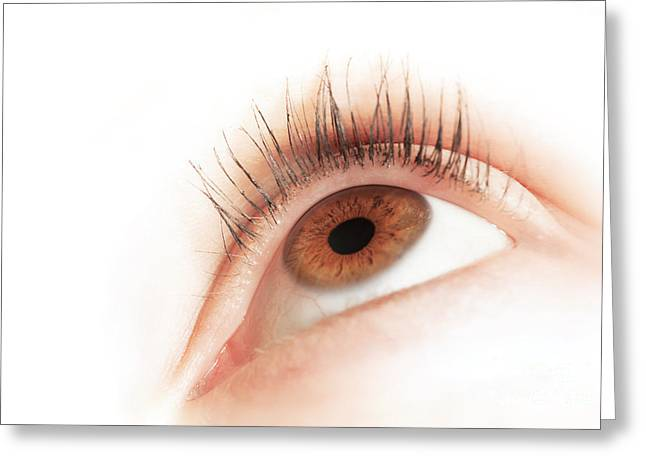 Brown Eye Of A Young Woman Looking Up Greeting Card by Michal Bednarek