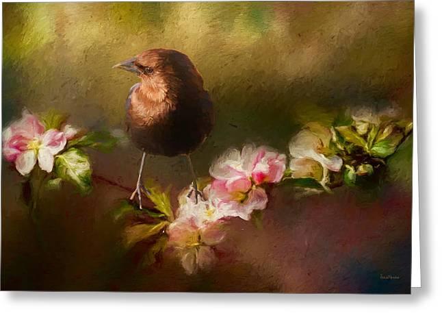 Brown-headed Cowbird - Painting Greeting Card by Ericamaxine Price