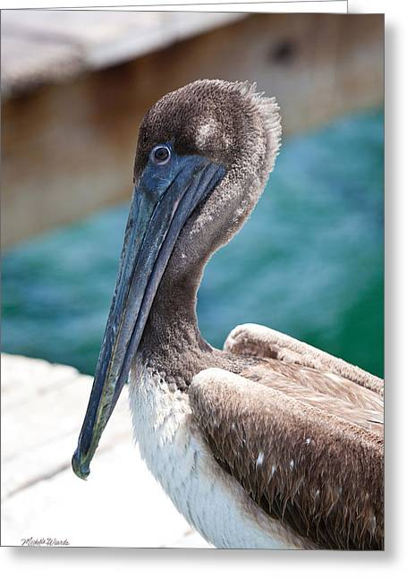 Brown Pelican Friend Greeting Card by Michelle Wiarda